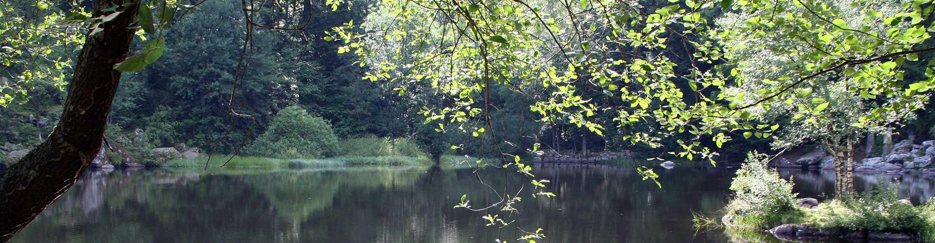 lac de la vallée de Munster le fichboedle